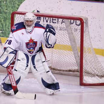 hockey-nets-prof